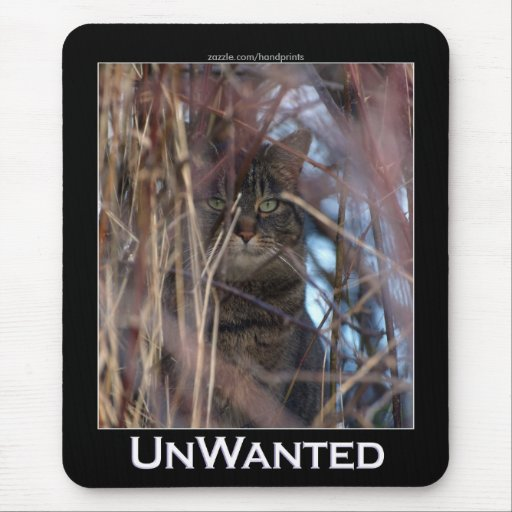 UnWanted Feral Cat Mousepad