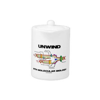 Unwind With Molecular Biology (DNA Replication) Teapot