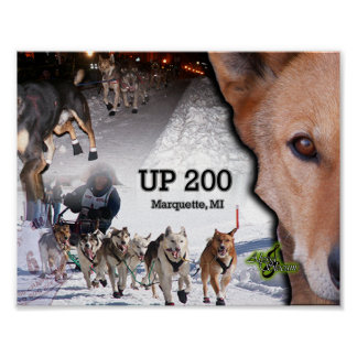UP 200 Collage Poster