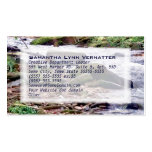 Up A Creek Double-Sided Standard Business Cards (Pack Of 100)