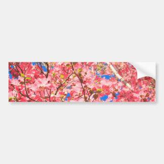 Up a Pink Red Dogwood Tree Bumper Sticker