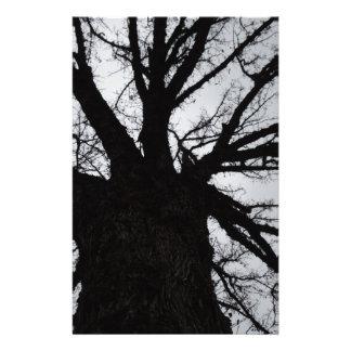 Up a Tree Stationery