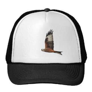 Up Beat Welsh Red Kite Trucker Hat