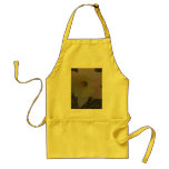 Up Close and Personal Aprons