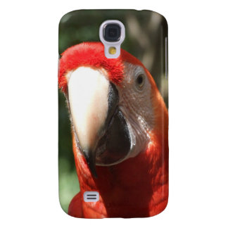 Up Close and Personal Scarlet Macaw iPhone 3 Case