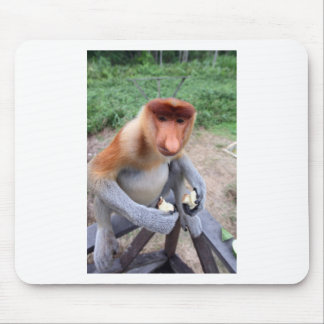 Up close and personal with male Proboscis monkey Mousepads
