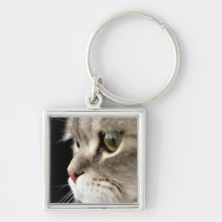 Up-Close Kitty Key Chain