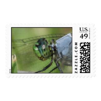 Up close! postage