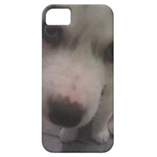 Up Close Puppy iPhone SE/5/5s Case