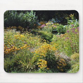 Up the Center Path Early Fall Mouse Pad