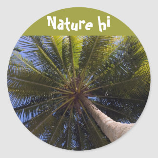 up the coconut tree classic round sticker