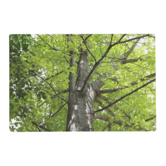 UP THE OAK TREE PLACEMAT