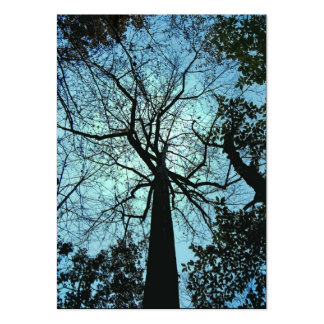 Up the Tree ATC Large Business Card