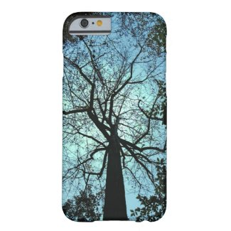 Up the Tree iPhone 6 Case