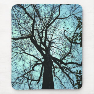 Up the Tree Mouse Pad