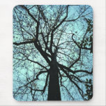 Up the Tree Mousepads