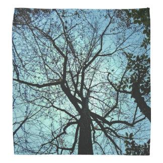 Up the Tree Bandana