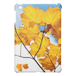 up to an ending iPad mini cases