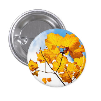 up to an ending pinback button