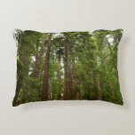 Up to Redwoods at Muir Woods National Monument Decorative Pillow