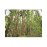 Up to Redwoods at Muir Woods National Monument Doormat