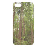 Up to Redwoods at Muir Woods National Monument iPhone 7 Case