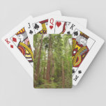 Up to Redwoods at Muir Woods National Monument Poker Deck