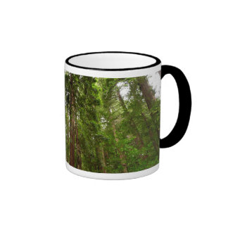Up to Redwoods at Muir Woods National Monument Ringer Mug