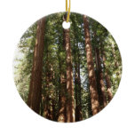 Up to Redwoods II at Muir Woods National Monument Ceramic Ornament