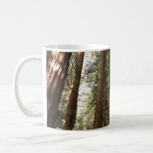 Muir Woods Mugs No Minimum Quantity Zazzle