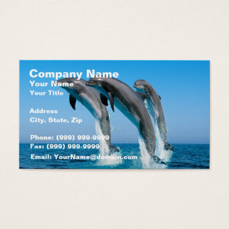 Up Up Up Dolphins Business Card