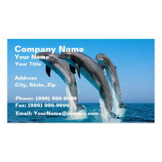 Up Up Up Dolphins Business Card Templates