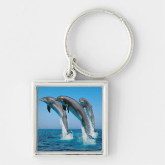 Up Up Up Dolphins Keychain