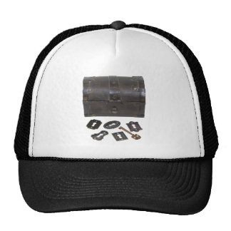 UpgradingSecurity031910 Trucker Hat