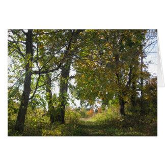 Uplands Farm Nature Sanctuary Greeting Card