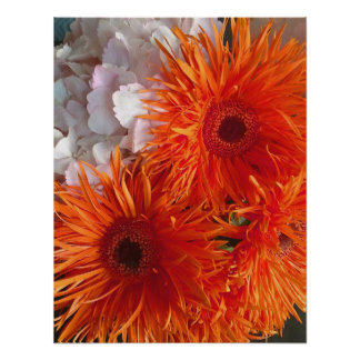 Uplifting happy and sunny orange flowers poster