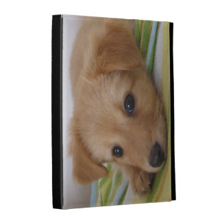 Upload your own photo cover iPad folio case
