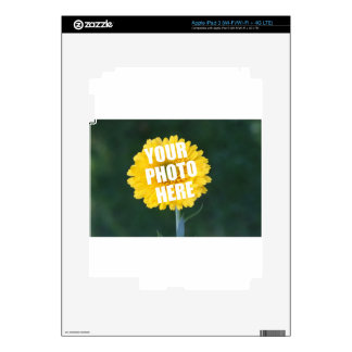 UPLOAD YOUR OWN PHOTO & Create The Perfect Gift iPad 3 Skins