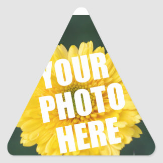 UPLOAD YOUR OWN PHOTO & Create The Perfect Gift Triangle Sticker