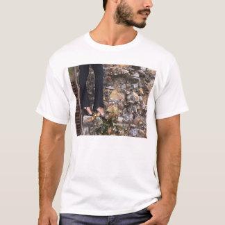 upon my wall T-Shirt