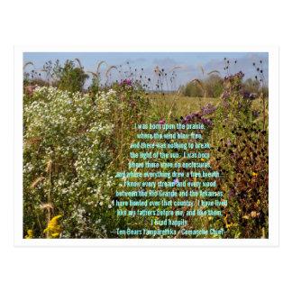 Upon The Prairie Postcard