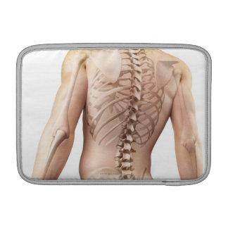 Upper Body Bones 2 MacBook Air Sleeve