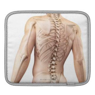 Upper Body Bones 2 iPad Sleeve
