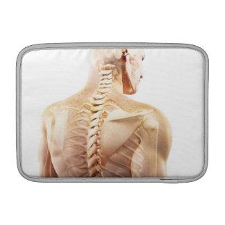 Upper Body Bones MacBook Sleeves