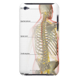 Upper Body Nerve Supply iPod Touch Cover