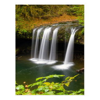 Upper Butte Creek Falls in Autumn Postcard