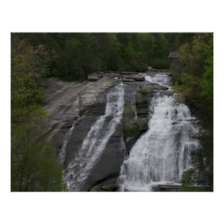 Upper Falls in Dupont Forest, NC Poster