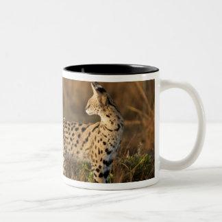Upper Mara, Masai Mara Game Reserve, Kenya, Two-Tone Coffee Mug