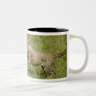 Upper Mara, Masai Mara Game Reserve, Two-Tone Coffee Mug
