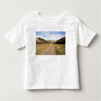 Upper Swaledale Toddler T-shirt
